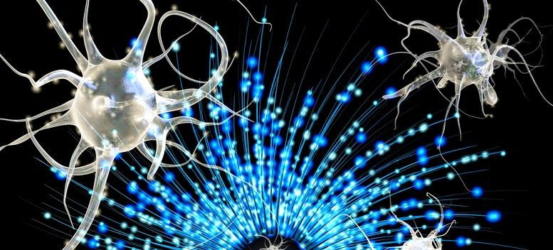 Neuronii-oglinda - cum sa atragem prosperitatea in vietile noastre cu ajutorul acestora