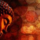 Daca te-ai iubi cu adevarat, nu ai putea niciodata rani pe cineva. 34 de citate memorabile ale lui Buddha!