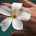 Iti dam arama pe fata: Personalitatea ta in functie de marimea degetelor
