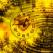 Horoscopul Toamnei 2010