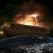 Ghidul supravietuitorului: 13 lectii de viata inconfundabile de pe Arca lui Noe