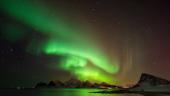 Aurora jucausa, pe cerul de deasupra insulei Vestvagoya, Lofoten