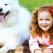 Copilul isi doreste un animal de casa. Cumpar sau nu? Opinia psihologului