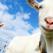 2 capre treceau un pod… Un super test de psihologie relationala pe care trebuie sa-l faci!