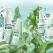AVON lansează noua gamă de îngrijire a pielii OxyPure