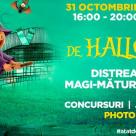 Jocuri si concursuri de Halloween pentru cei mici la Veranda Mall