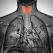 Ai probleme cu Tiroida, glanda-fluture a organismului? Atunci trebuie sa citesti acest articol!