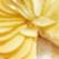 Reteta La cucina - Tarta cu pere