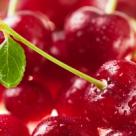 VISINELE - miracolul Antioxidant si Detoxifiant al verii! 10+ dovezi