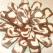 Rulada din ciocolata