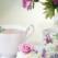 Ceaiul verde - \'medicamentul miraculos al mentinerii sanatatii\'