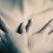 Louise Hay: 32 de probleme de sanatate des intalnite. Cum sa le vindeci prin Puterea Afirmatiilor