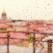 Sunt cele mai frumoase fotografii in ploaie pe care le-am vazut vreodata: Vezi cum arata Sankt Petersburg sub ploaie!