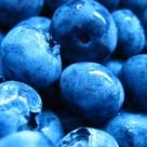 Secretul tineretii: acai berry