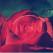 20 de imagini cu flori