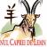 Horoscop Chinezesc 2015. Previziuni pentru fiecare zi