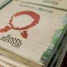 (P) Roots Revival Romania ajunge la Bucuresti