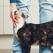 România... pisicilor. Studiu: cum arată portretul proprietarilor de pisici din Români?