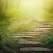 Inteleptul spune... Cele 10 reguli de viata ale Omului Intelept