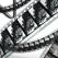 AQUA film, muzica si teatru