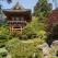 Horoscopul Chinezo-japonez: Afla cine este Protectorul zodiei tale asiatice!