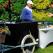 Jubile Catering: vara asta se poarta petrecerile in gradina cu aer exotic si meniuri personalizate