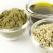 Semintele de canepa - cea mai bogata sursa de proteina