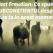 Test Freudian: Ce spune subconstientul tau despre viata ta in acest moment?