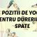 Top 6 pozitii de YOGA FOARTE SIMPLE care te ajuta cu durerile de spate!