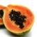 Fructul de papaia, portia zdravana de sanatate