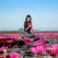 Lacul cu nuferi roz: În Thailanda există un loc magic în care, în fiecare iarnă, un lac se transformă într-un spectacol ireal
