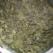 Piure de stevie