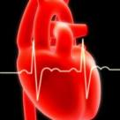 Despre bolile cardiovasculare si factorii lor de risc