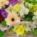FLORIA: Noua colectie de buchete de flori de primavara