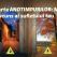 Test – Poarta ANOTIMPURILOR - Află care este mesajul ascuns al Sufletului tău!
