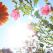 VITAMINA SOARELUI: Intelege beneficiile nemaipomenite ale Vitaminei D