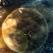 Ego vs. Univers: Alan Watts - 10 citate despre cum sa devii cine esti cu adevarat