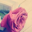 TOP 50 cele mai frumoase poezii de iubire din lume! Nina Cassian si Doina Ioanid, celebre mondial