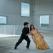 PINA 3D: Fenomenul cinematografic european al anului vine la TIFF