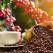 7 curiozități despre cafea - una dintre cele mai populare băuturi din lume