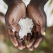 ONU: Anul pandemiei a fost marcat de creșterea nivelului de foamete în lume