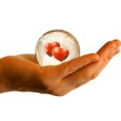 Secretele de iubire ale lui 2011 in Horoscopul Italian
