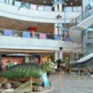 Expozitie de monstri marini la Plaza Romania