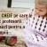 7 FRAZE CHEIE  pe care le folosesc profesorii Montessori si pe care ar trebui sa le folosim si noi!