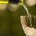 Cum poți obține un vin limpede cu un gust deosebit