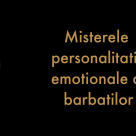 Horoscopul African al barbatilor: Inteligenta emotionala a zodiilor masculine