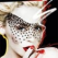 Kylie Minogue la Bucuresti