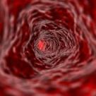 Grupa sanguina � dezvaluie misterele ascunse ale personalitatii tale