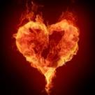 Salvati planeta cu sange rosu: Cine ne polueaza dragostea?