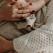 Lactoferina – ce este si ce rol are